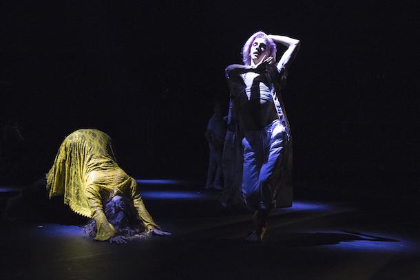 Les soirées «Danses Buissonnières» proposées par Tangente