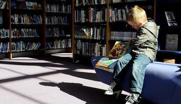 Faites le plein de lectures avant le congé des fêtes dans les bibliothèques de MHM