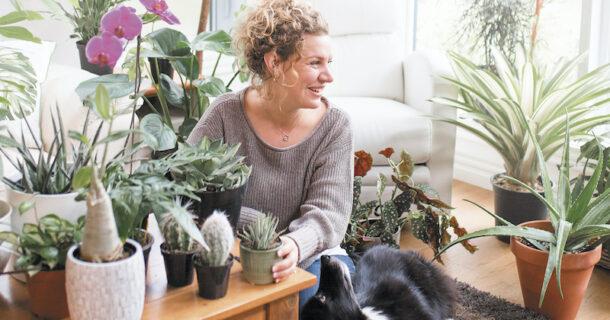 Pour adopter de vertes habitudes: «Plantes vertes: une jungle entre quatre murs» de Mélanie Grégoire