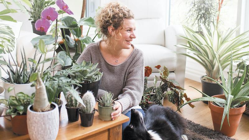 Critique-livre-Plantes-vertes-Une-jungle-entre-quatre-murs-Melanie-Gregoire
