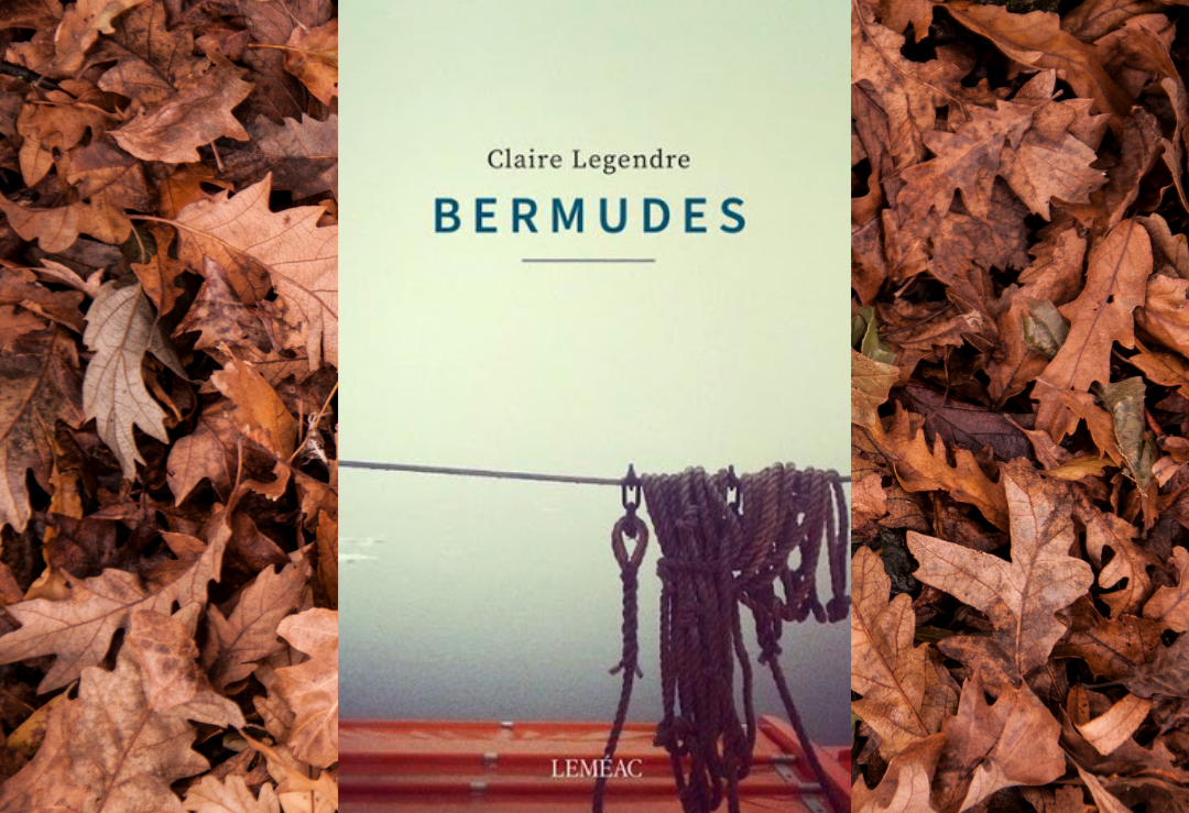bermudes-collage-Bible-urbaine