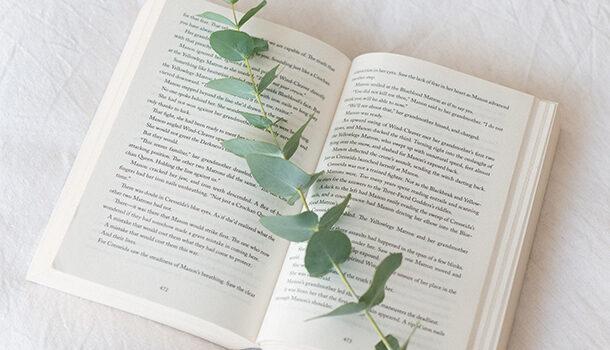 5 suggestions de livres qui vous aideront à apprivoiser le minimalisme