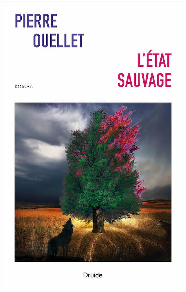 Critique-Letat-sauvage-Pierre-Ouellet-roman-Editions-Druide